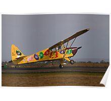 Fake Landing Poster