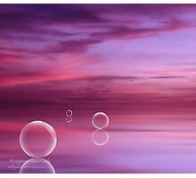 Rose Glass Photographic Print