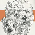 West Highland White Terrier by BarbBarcikKeith