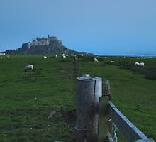 Lindisfarne Castle by WatscapePhoto