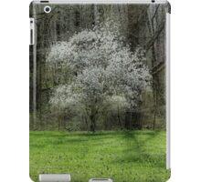 Star Magnolia Tree iPad Case/Skin