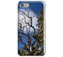Interesting tree branches against blue sky and white clouds. floral nature garden photography. iPhone Case/Skin