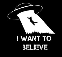 I want to believe - cat abduction by spectralstories
