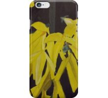 Forsythia Flowers Up-Close iPhone Case/Skin