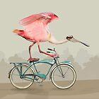 Corsair Spoonbill. by John Gieg