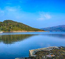 Salen Bay Loch Sunart by Chris Thaxter