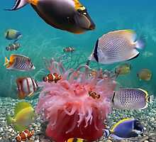 Tropical Fish by FantasyDesign