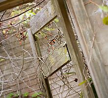 Doorway Ruins by Susan Gottberg
