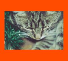 Retro Tabby Cat and Green Tinsel Kids Clothes