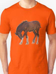 Foal - Cotebrook Shire Horse Centre Unisex T-Shirt