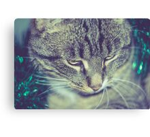 Retro Tabby Cat and Green Tinsel 2 Canvas Print