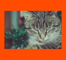 Retro Tabby Cat and Green Tinsel 4 Kids Tee