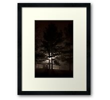 Sultry Night Framed Print