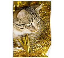 Tabby Cat and Yellow Tinsel 2 Poster