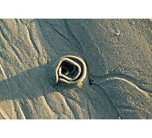 Sand Rose Photographic Print