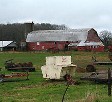 Working farm by megrag53