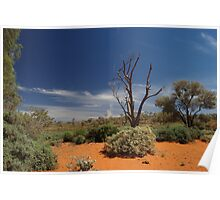 Outback Afternoon Poster