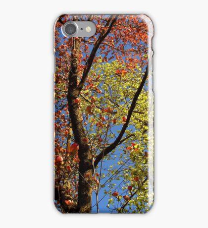 Dogwood Double iPhone Case/Skin