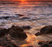 Glowing Sand by Barbara  Brown