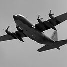 Avalon Airshow by Michael Eyssens