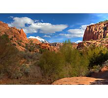 Moab Backcountry Photographic Print