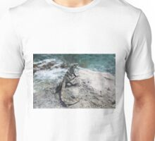 A Lizard in Isla Mujeres, Mexico Unisex T-Shirt