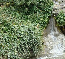 Waterfall through Ivy by JeanMCarlos