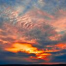 Dawn Sky by Naomi Brooks