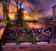Cornmeal Creek Promenade-2849 by Barbara Harris