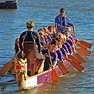 Dragon Boat Racing by GailD
