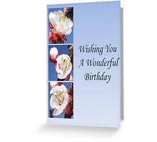 Have A Wonderful Birthday Greeting Card