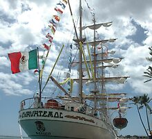 Flying the Mexican Flag by Greg Kolio Taylor