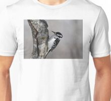 Hairy Woodpecker (female) T-Shirt