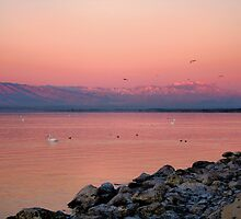 Morning Dawn Salton Sea by Jo Nijenhuis