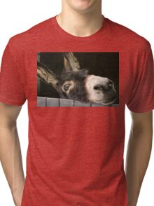 Doris the Donkey Tri-blend T-Shirt