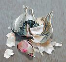 Garlic Bulb by Nigel Bangert