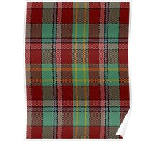 00419 Golden Broom Tartan  Poster