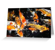 Hungry Koi Greeting Card