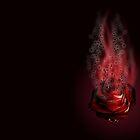 Smouldering rose by i-ra888