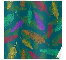 Сolor feathers pattern  Poster