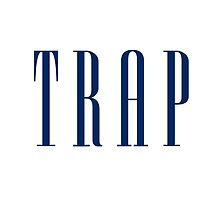 TRAP by Michael Wright