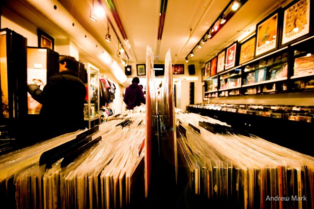 Vinyl by Andrew Mark