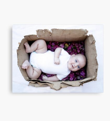 Babe in a box / Smiley Reilly Canvas Print