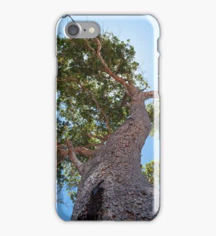 Ent Lord iPhone Case/Skin