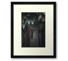 The Forest Through the Trees... Framed Print