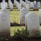 Fallen Heroes by Rachael Lynch