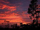 """Molten Dawn"" by debsphotos"