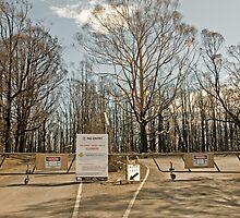 Kinglake National Park Gates by mspfoto