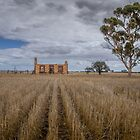 Cottage in the stubble by Jan Pudney