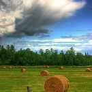 Clouds Over a Hayfield in Ontario by Wayne King